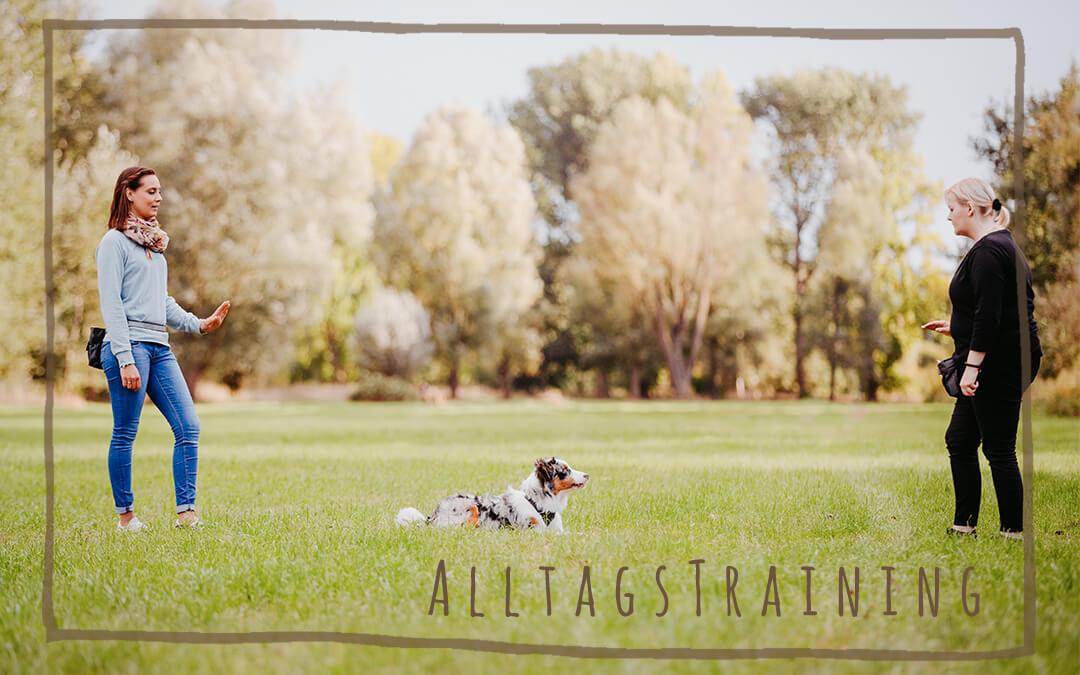 Alltagstraining