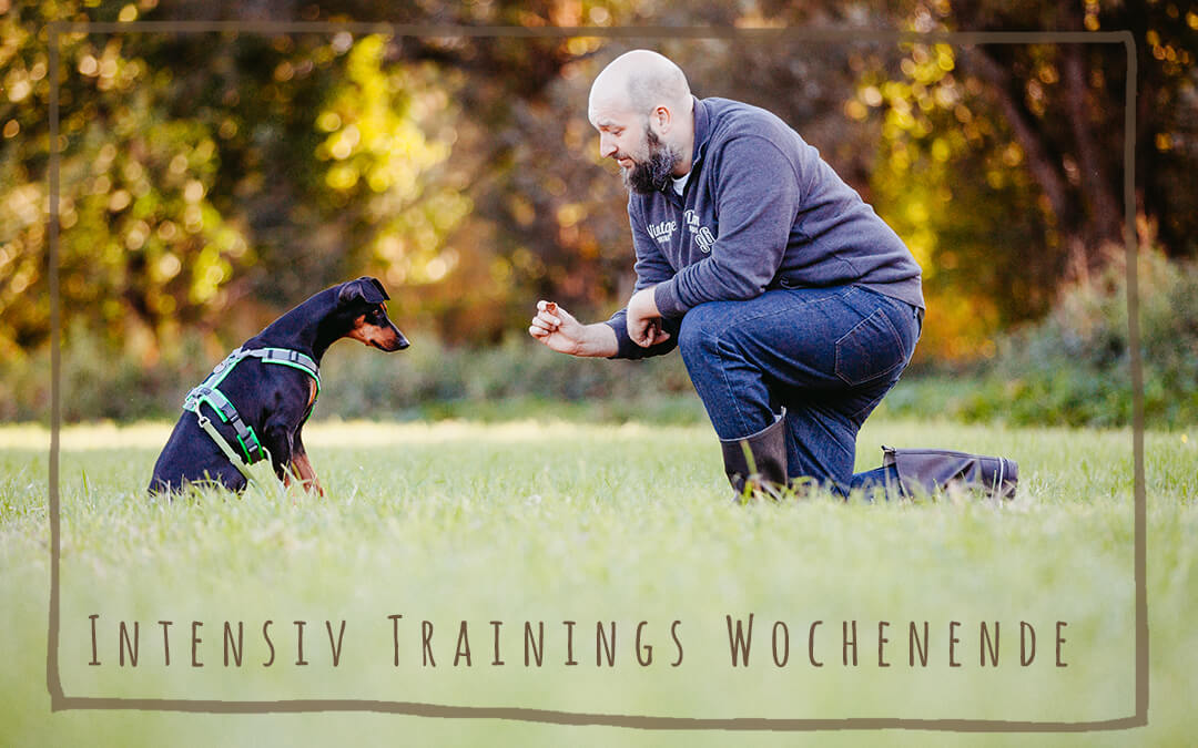 Intensiv-Trainings-Wochenende