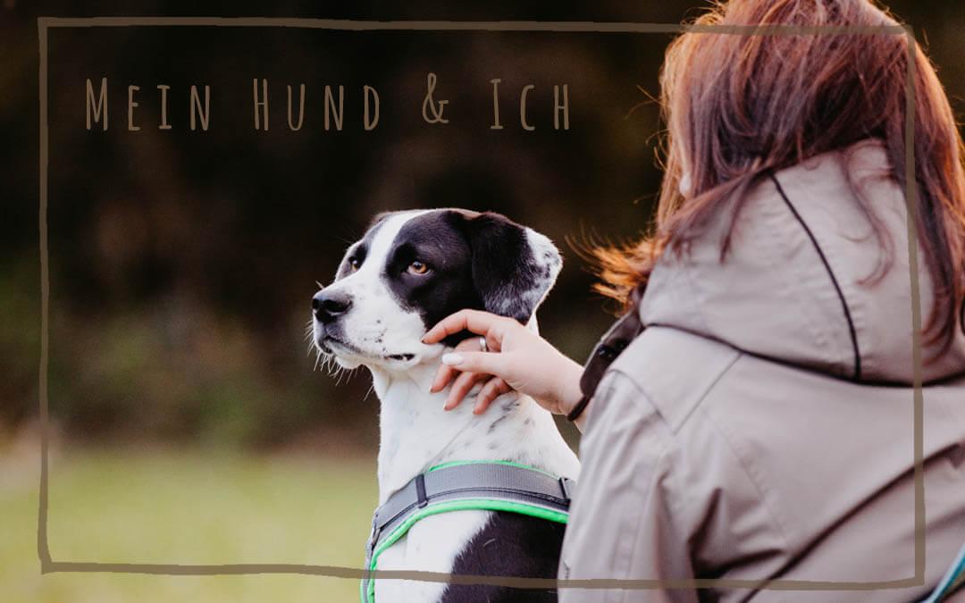 Mein Hund und ich: Bindung & Vertrauen
